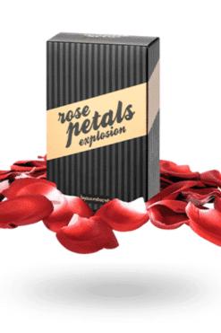 petales-de-rose